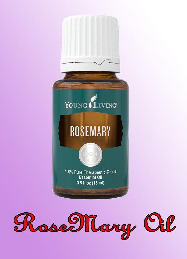Rosemary Oil for Natural Hair Growth