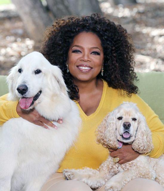 Oprah with Curls